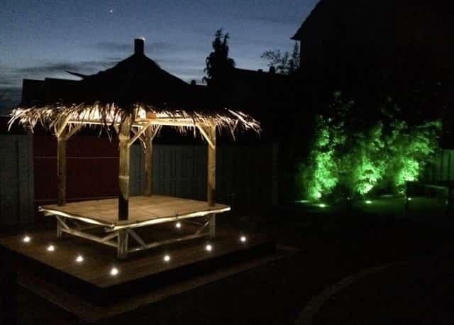 Bambus Liege bei Nacht